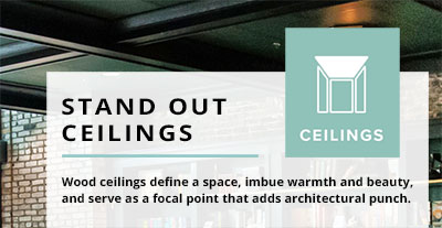 SSi ceilings